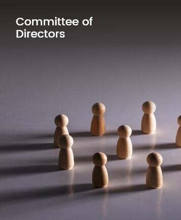Committee of Directors