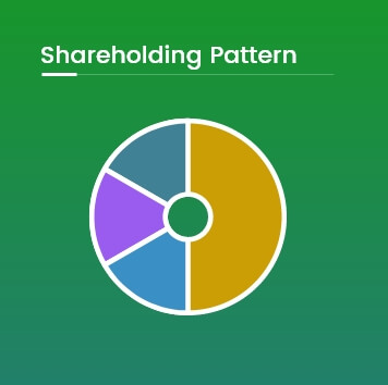 Shareholding Pattern